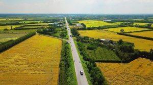 Có nên mua đất nông nghiệp ở Bình Thuận không?