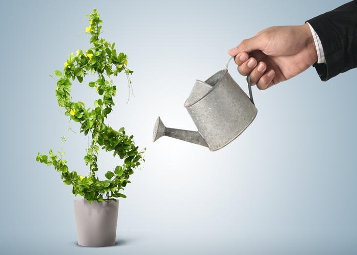 Hy vọng bạn đã có được những thông tin cần thiết cho việc đầu tư của mình